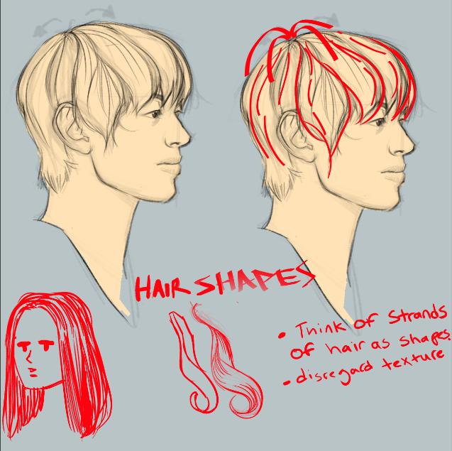 hairstudy3